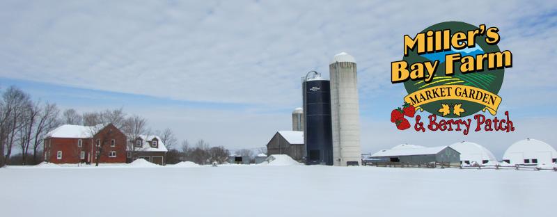 Farming On The Web - Miller's Bay Farm